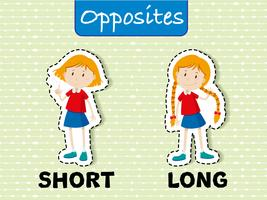 Tegenovergestelde woorden voor kort en lang vector