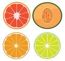 Een set van gesneden fruit vector
