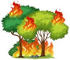 Geïsoleerde boom in brand vector