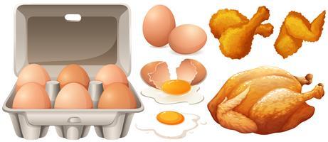 Eieren en gebakken kip vector