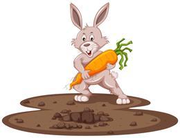 Schattig konijntje en verse wortel in de tuin