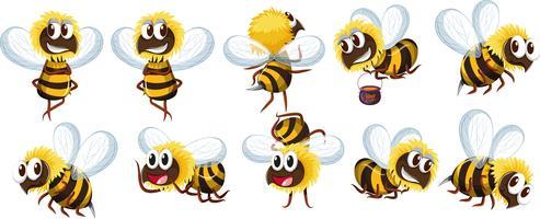 Set van bijen karakter vector