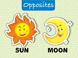Tegenover woordkaart voor zon en maan vector