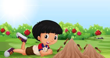 Jonge jongen met een mierenhoop