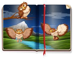 Rivierscène met drie uilen in het boek