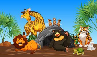 Vriendelijke blije dieren in de natuur vector