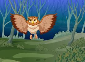 Een uil die 's nachts vliegt