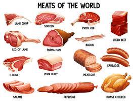 Vlees van de wereld vector