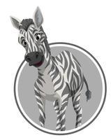 Een zebra op stickerbanner vector