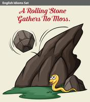 Een rollende steen en een slang