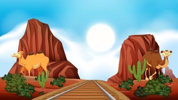 Spoorweg door de woestijn vector