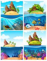 Een reeks eiland- en onderwaterscènes