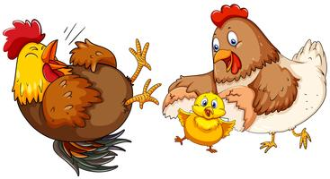 Kippenfamilie met klein kuiken