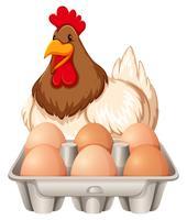 gelukkige kip en de eieren vector