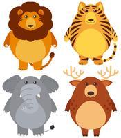 Vier verschillende wilde dieren met blij gezicht vector