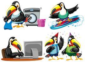 Toucan die verschillende activiteiten doet