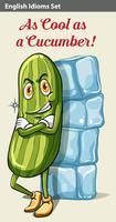 Een komkommer naast de ijsblokjes