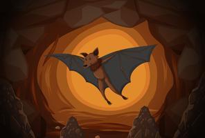 Vleermuis in een grot vector