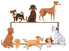 Vele soorten honden op het bord vector