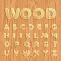 Hout getexturiseerde lettertype ingesteld, vector illustratie