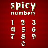 Modern 'Spicy lettertype voor elk gebruik, vectorillustratie