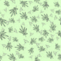 Groene thee naadloze patroon vector