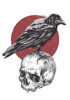 Raven op schedel vector