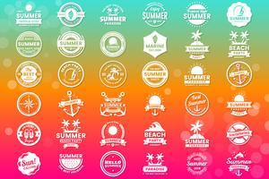 Zomer Retro Vector Logo voor banner