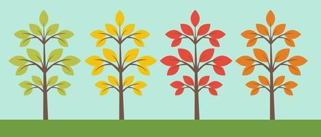 Verschillende bomencollectie