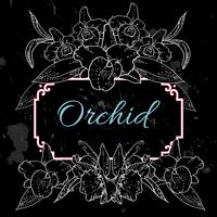 zwarte achtergrond met witte orchideeën vector