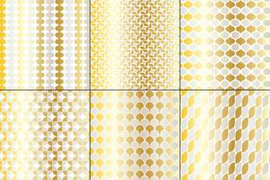 Silver & Gold Big Mod-patronen vector