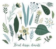 Vector floral ontwerpelementen. Bladeren, bloemen, gras, takken, bessen.
