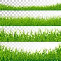 Groene gragranden instellen vectorillustratie op transparante achtergrond.