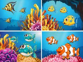 Vissen zwemmen onder de oceaan vector