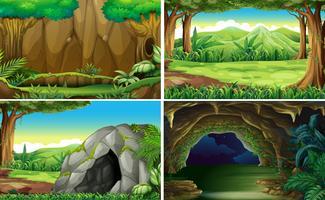 Vier verschillende scènes van bossen vector