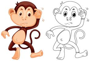 Dierenoverzicht voor kleine aap