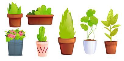 Potplanten met roze bloemen en cactus vector