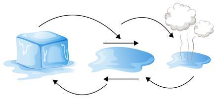 Diagram dat laat zien hoe water van vorm verandert