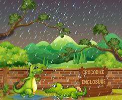 Twee krokodillen in de regen vector