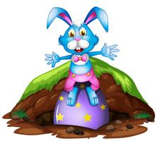 Een gelukkig konijn van Pasen op witte achtergrond