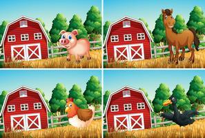 Set van landbouwhuisdieren vector