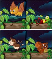 Scènes met dieren in de nacht