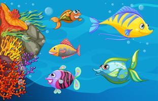 Een school vissen onder de zee