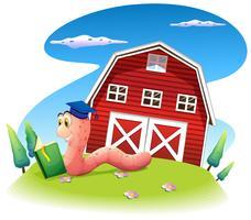 Een worm die op de heuvel met een barnhouse leest
