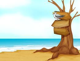 Een strand met houten uithangbord