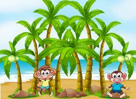 Een strand met kokospalmen en speelse apen vector