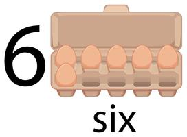 Zes eieren in karton