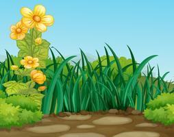Een groene natuur achtergrond vector
