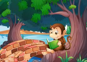 Een aap die een boek leest onder de grote boom dichtbij de brug