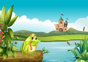 Een kikker boven een drijvende kofferbak over het kasteel vector